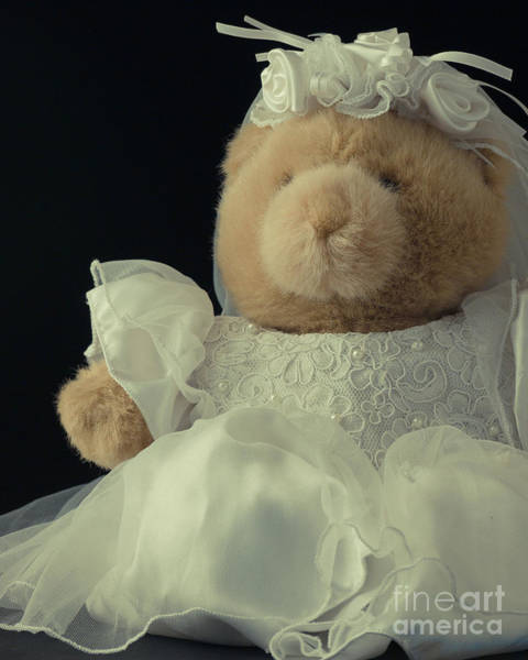 Photograph - Teddy Bear Bride by Edward Fielding