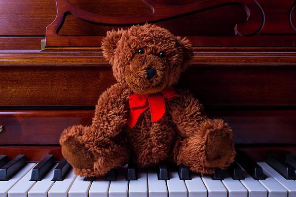 Wall Art - Photograph - Teddy Bear On Piano Keys by Garry Gay