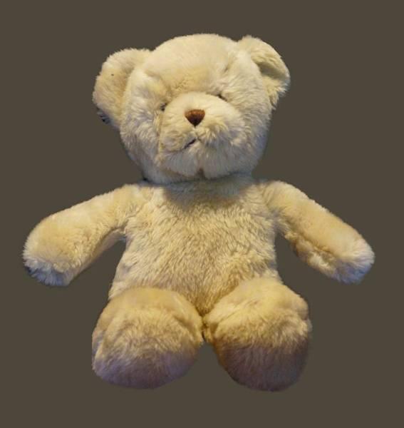 Photograph - Teddy Bear by Pamela Walton
