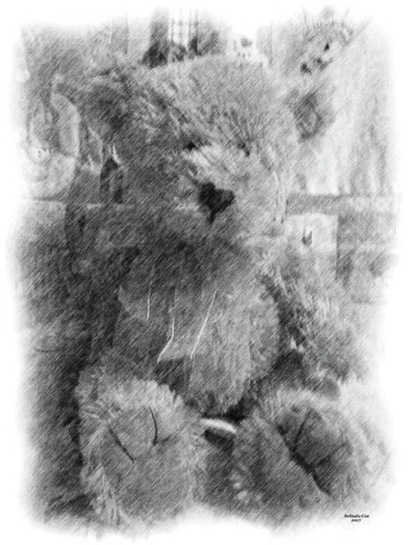 Digital Art - Teddy Bear Sketch by Artful Oasis