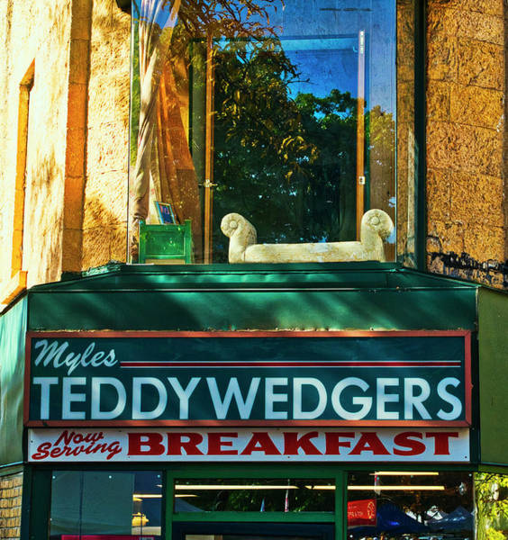 Photograph - Teddywedgers - Madison - Wisconsin by Steven Ralser