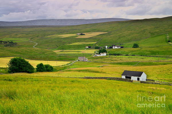 Photograph - Teesdale Landscape by Martyn Arnold