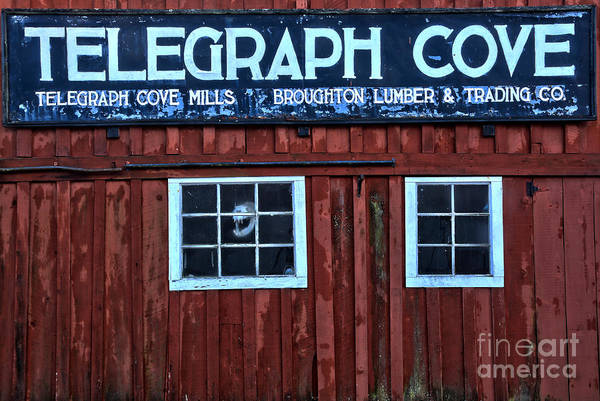 Photograph - Telegraph Cove by Adam Jewell