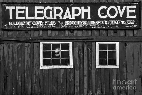 Photograph - Telegraph Cove Black And White by Adam Jewell