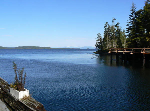 Photograph - Telegraph Cove Vancouver Island Bc by Barbara St Jean
