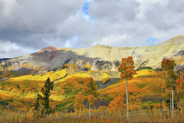 Photograph - Telluride Highline Fall Color by Ray Mathis