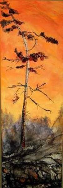 Painting - Temagami Pine by Anne-D Mejaki - Art About You productions
