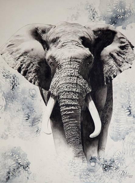 Animal Painting - Tembo by Cherie Tucker