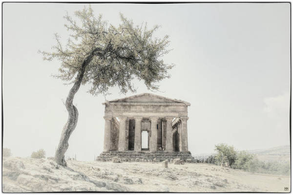 Photograph - Temple Of Concord by John Meader