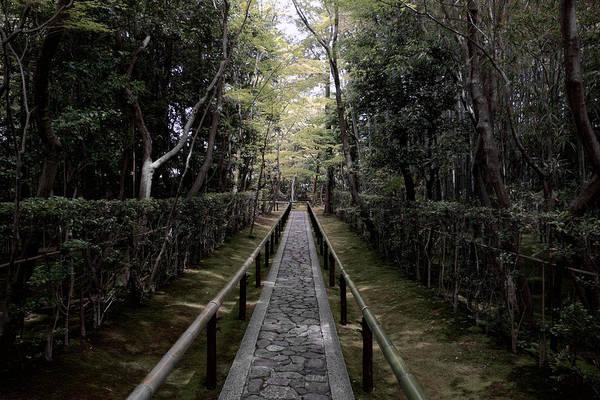 Wall Art - Photograph - Temple Path - Kyoto Japan by Daniel Hagerman