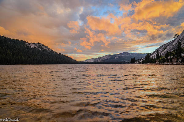 Photograph - Tenaya Lake by Mike Ronnebeck