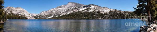 Tioga Photograph - Tenaya Lake - Yosemite California by Dan Carmichael