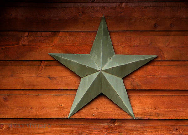 Photograph - Tenkiller Lone Star by Susan Vineyard