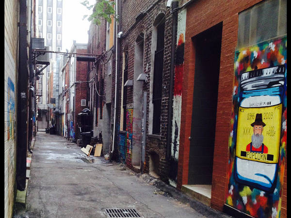 Wall Art - Photograph - Tennessee Alley by Joyce Kimble Smith