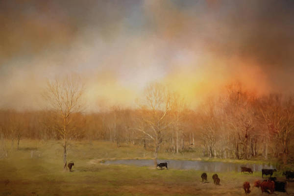 Photograph - Tennessee Spring Morning by Jai Johnson