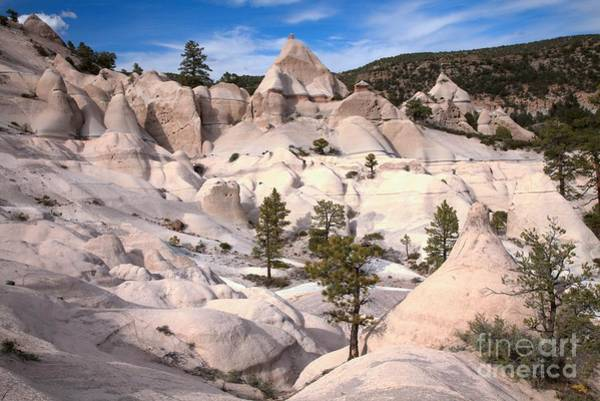Photograph - Tent Rocks At Dusk by Adam Jewell