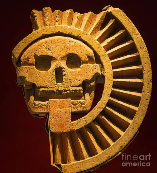 Artifacts Wall Art - Photograph - Teotihuacan Skull by Inge Johnsson
