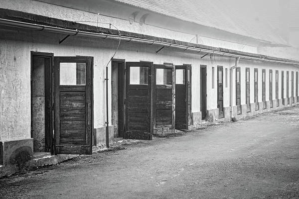 Photograph - Terezin Cell Block Doors by Stuart Litoff