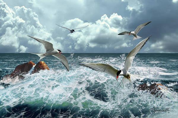 Wall Art - Digital Art - Terns In The Surf by M Spadecaller