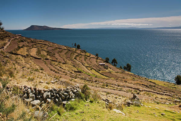 Photograph - Terraces On Taquile Island by Aivar Mikko