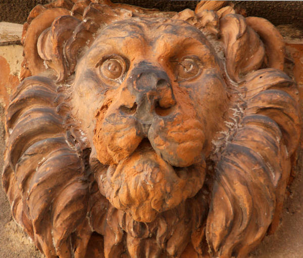 Wall Art - Photograph - Terracotta Lion Face In Venice by Michael Henderson