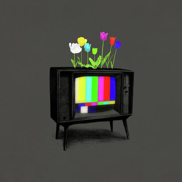 Television Drawing - Test Garden by Eric Fan