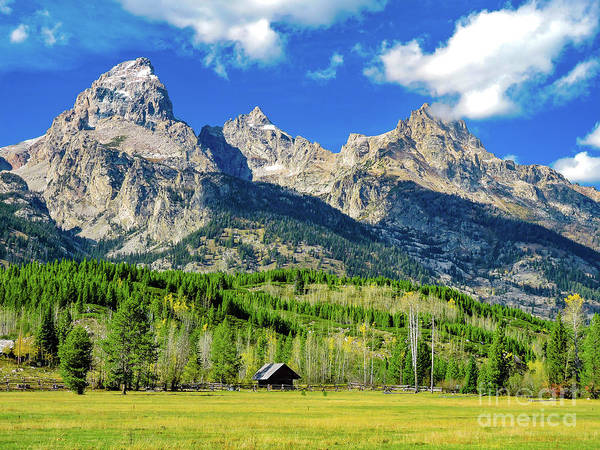 Wall Art - Photograph - Teton Alone In The Wilderness 2 by Norma Brandsberg