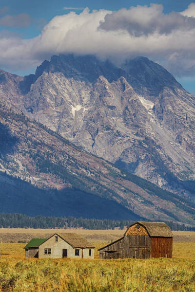 Photograph - Teton Country by James BO Insogna