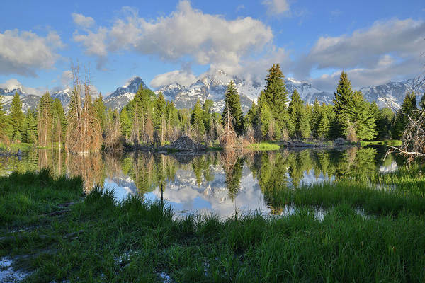 Photograph - Teton Mirror Image by Ray Mathis
