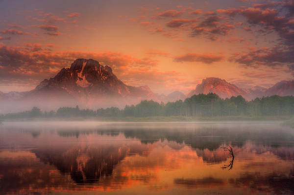 Photograph - Teton Mist by Thomas Gaitley