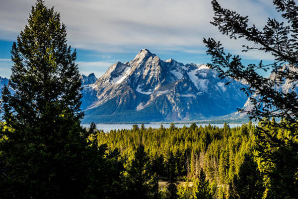 Photograph - Teton Peak From Signal Mountain by TL  Mair