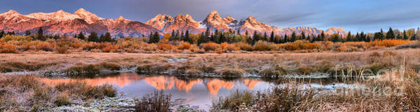 Photograph - Teton Reflections Amonth The Willows by Adam Jewell