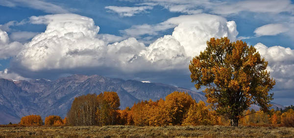 Photograph - Teton Valley Falltime by Wes and Dotty Weber