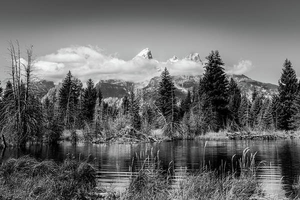 Photograph - Tetons At Schwabacher's Landing Black And White by TL Mair