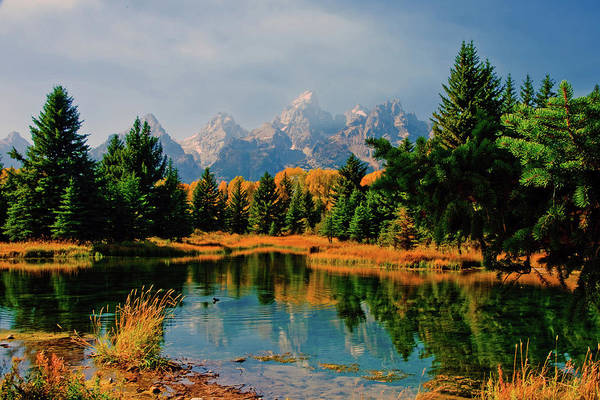 Photograph - Tetons by Norman Hall