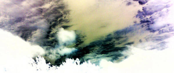Wall Art - Photograph - Texas Afternoon by Max Mullins