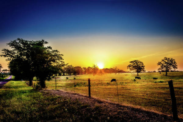 Photograph - Texas At Dawn by Barry Jones
