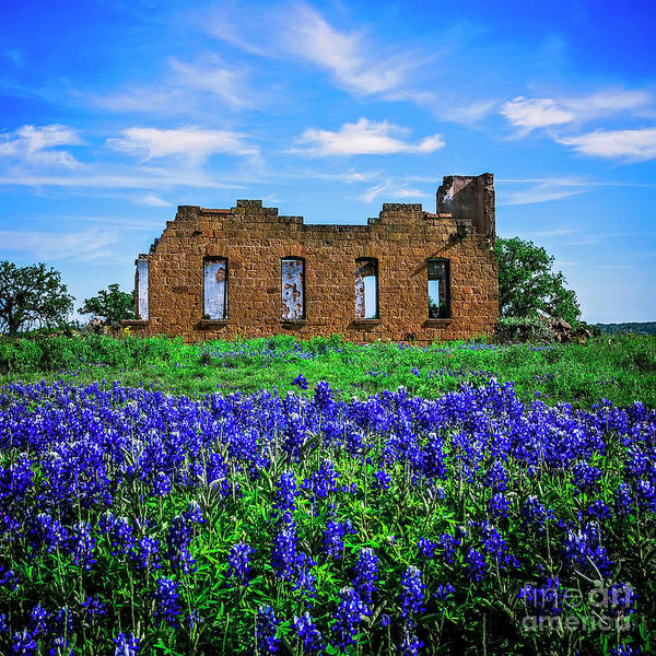 Wall Art - Photograph - Texas Blues - Pontotoc by Katya Horner