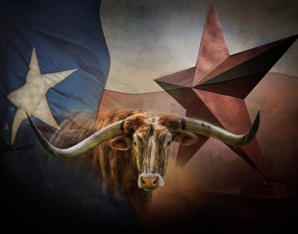 Wall Art - Photograph - Texas by David and Carol Kelly