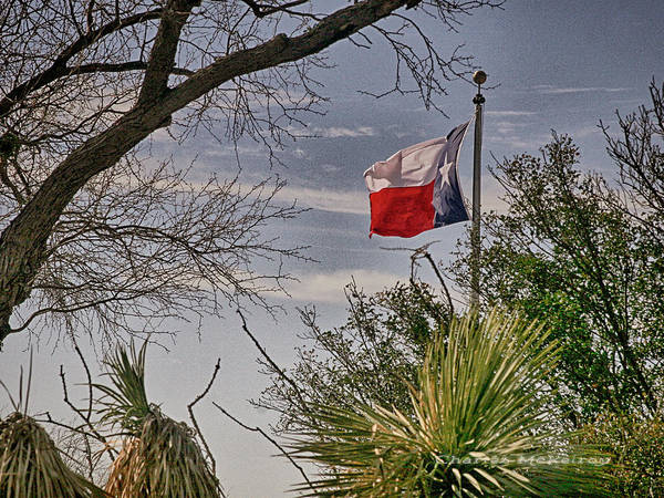 Photograph - Texas Flag by Charles McKelroy