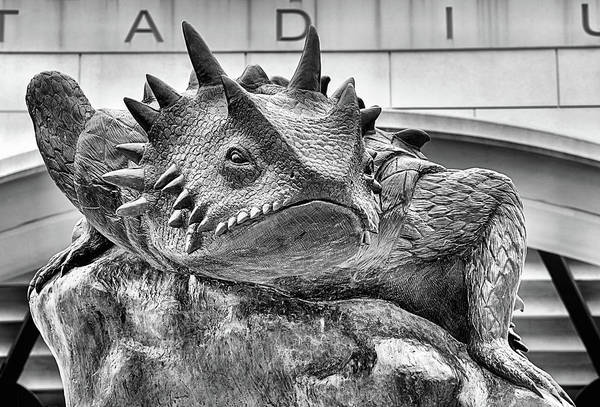 Tcu Wall Art - Photograph - Texas Horned Frog Black And White by JC Findley