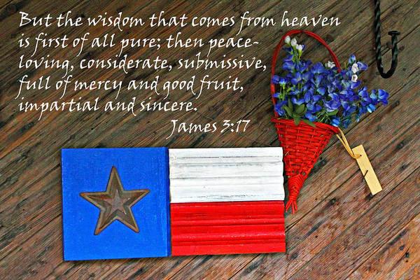 Basket Stars Photograph - Texas Icons James 3v17 by Linda Phelps
