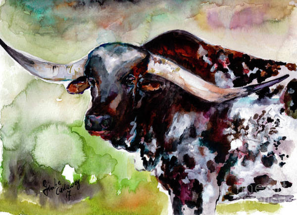 Painting - Texas Longhorn Portrait by Ginette Callaway