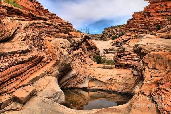 Photograph - Texas Red Rock Water Hole by Adam Jewell