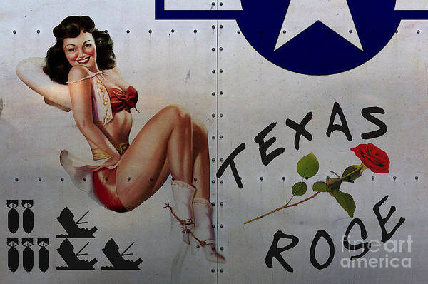 Bomber Painting - Texas Rose Noseart by Cinema Photography
