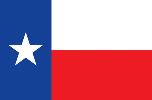Lone Star Painting - Texas State Flag by American School