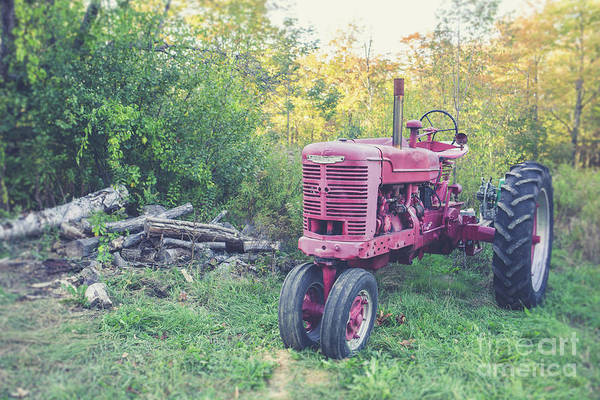 Photograph - Texas Vintage Farmall, Tractor by Edward Fielding