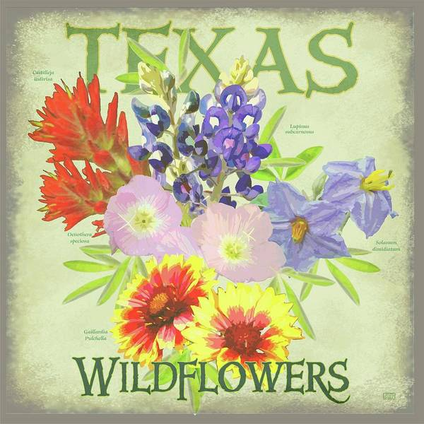 Texas Bluebonnet Digital Art - Texas Wildflowers by Jim Sanders