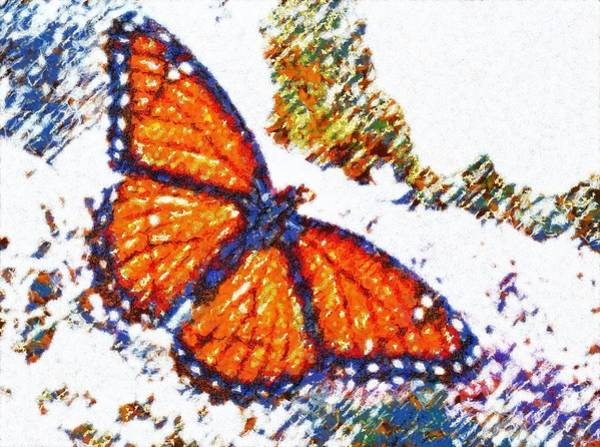 Digital Art - Textured Butterfly by Catherine Lott