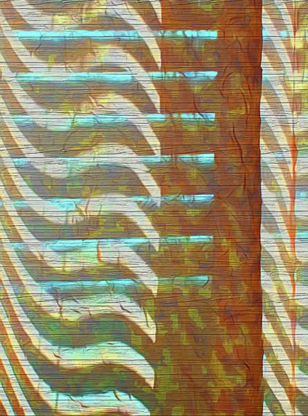 Photograph - Textured Patterns by Reynaldo Williams